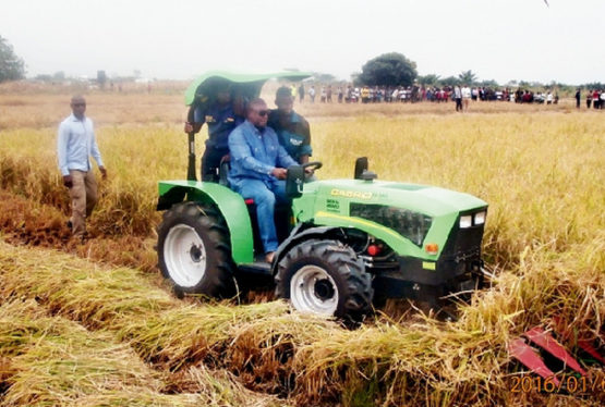 Former President,John Dramani Mahama, has called for farmers to be given better rewards for their efforts towards agriculture in the country. Farmers deserve better than cutlasses and hoes as prizes – Mahama He said farmers deserve to be better equipped to work, insisting it is archaic to dish out cutlasses and hoes to farmers as […]