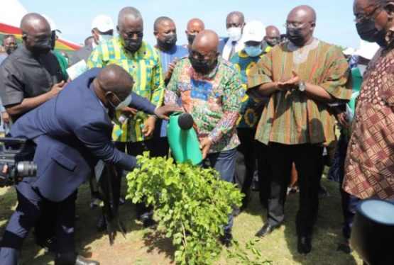 President Akufo-Addo started the nationwide environmental exercise by planting a seedling at the seat of government. On June 11, 2021, the Ghanaian public undertook a nationwide environmental exercise by planting over 5m seedlings to help salvage the country's depleted tree cover. Led by President Nana Addo Dankwa Akufo-Addo, the exercise saw people from all walks […]
